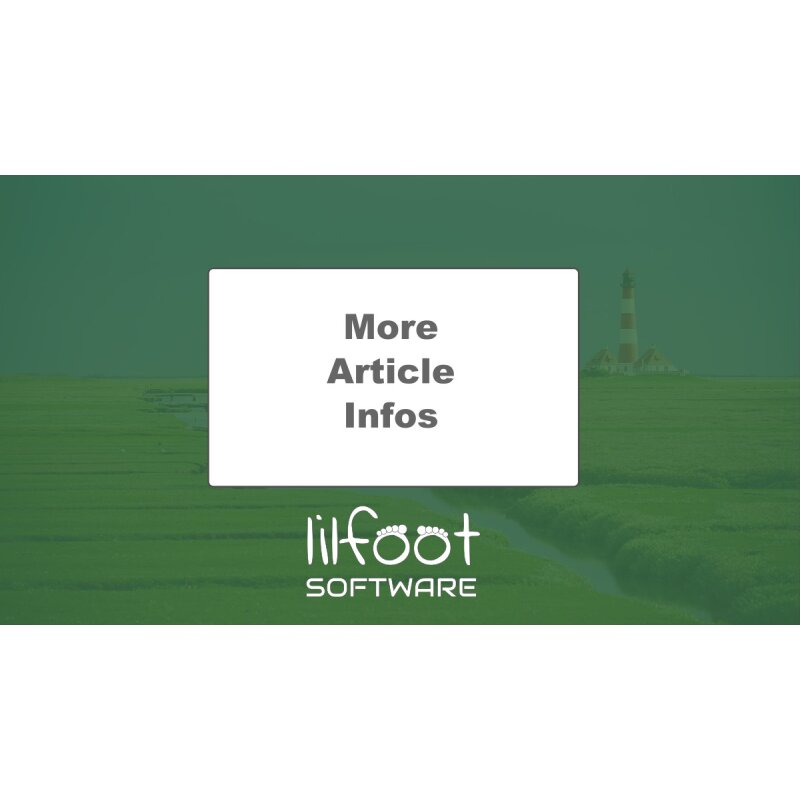 LilFOOT More Article Infos
